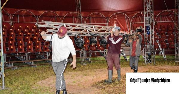 Es geht um Geld: Das sagen Breu und Zirkusfamilie Lauenburger zum Zirkus-Aus