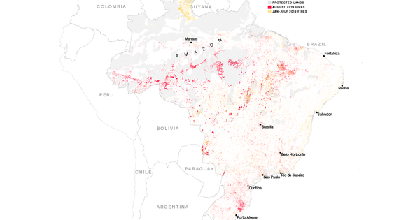 Here's Where The Amazon Is Burning And Why It's Going to Get Worse
