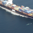 Sound tech hopes to keep whales from fatal collisions with ships | KCRW