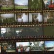 NFL training camp photos: Players use disposable cameras   SI.com