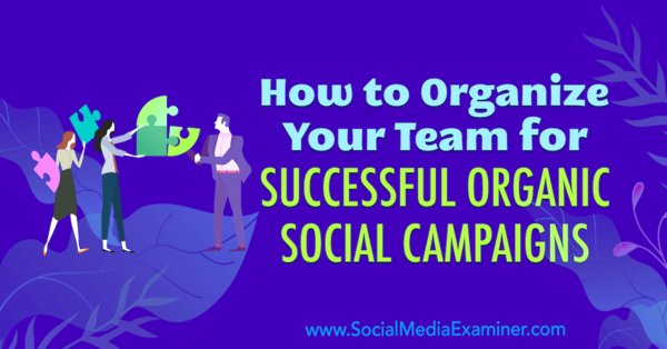 How to Organize Your Team for Successful Organic Social Campaigns