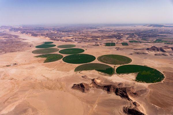 Wie Jordanien gegen die Dürre ankämpft
