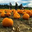 10 Fall events in Northwest Florida you won't want to miss