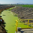 Bioreactors to the Rescue in Polluted California Wetlands | Hakai Magazine