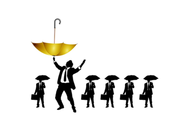Venture Capital — No, We're Not Normal
