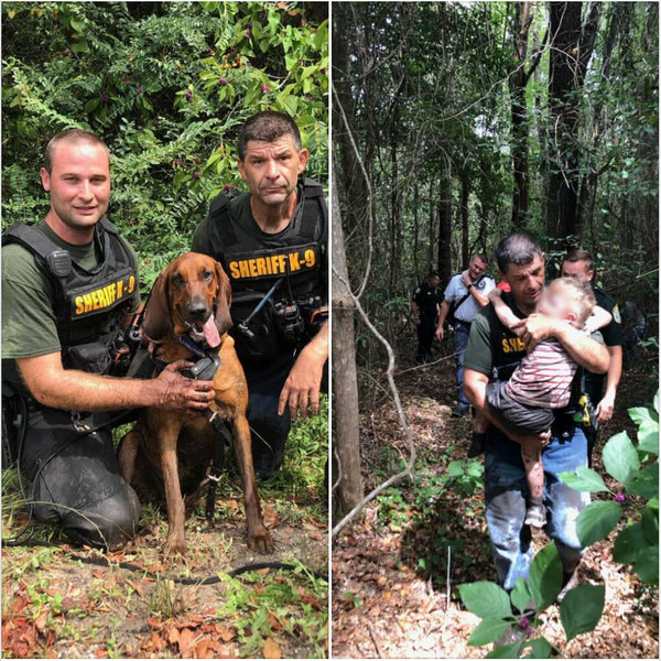 Santa Rosa County Sheriff's bloodhound