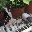 Using data to help a school garden - Raspberry Pi