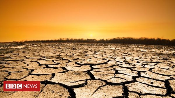 Climate change: 12 years to save the planet? Make that 18 months - BBC News