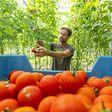 Loeren bij de boeren: 'We hebben hier een perfecte kringloop'