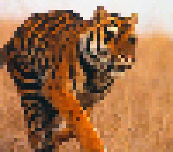 2.500 pixels