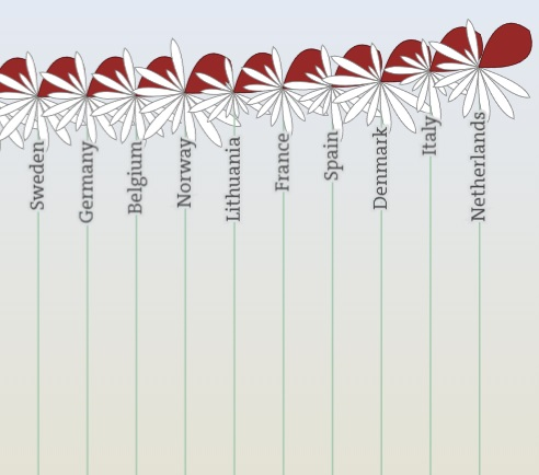 cropped image from OECD Better Life Index with the work-life balance 'petals' selected