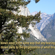 Yosemite National Park Leads the Way in Deaf Services | abc30.com