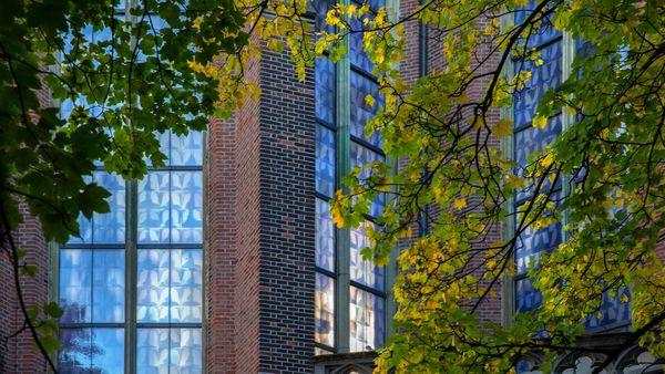 Neue Kirchenfenster aus tausend Lungen-Röntgenaufnahmen