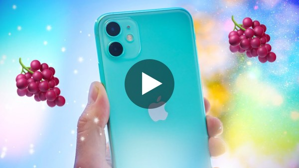 iPhone 11 (Not Pro) - I Shot a Music Video.