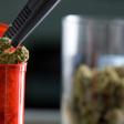 First Medical Cannabis Graduate Program Offered In Maryland : Shots - Health News : NPR