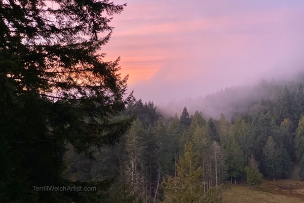 Fog rolling into the sunrise across the valley by Terrill Welch
