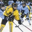 NWHL releases Twitch viewership data for first month of 2019-20 season - The Ice Garden