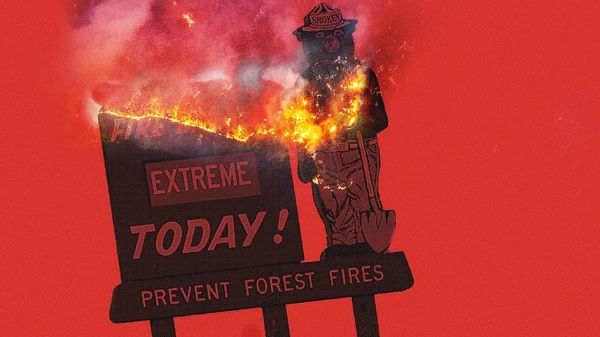 Smokey Bear is 75. Is it time for him to retire?