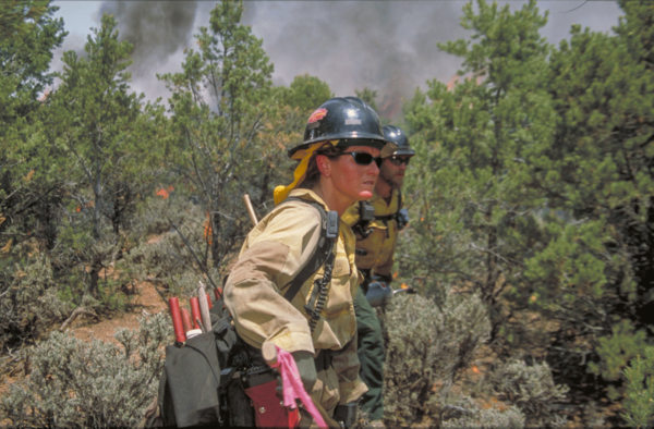 Reports show wildland firefighters may struggle in secret once the season ends