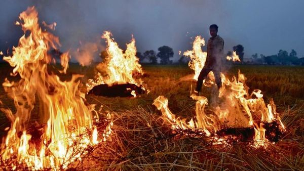 North India's stubble burning woes have an RBI link