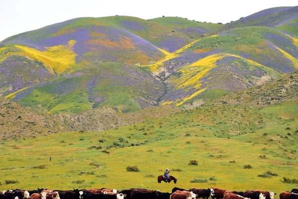 Full funding of Land Water Conservation Fund passes key Senate hurdle
