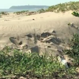 Durban beachfront double murder victims identified | eNCA