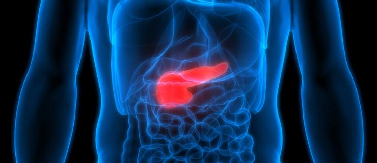 🦠 Ny behandling gør kræftceller selvdestruktive