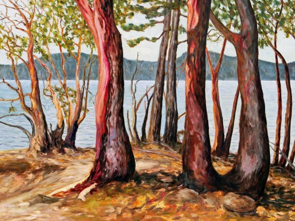 Morning With Arbutus Trees by Terrill Welch | Artwork Archive