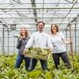 Op weg naar klimaat-positieve groenten
