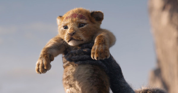 MPC, Studio Behind 'The Lion King,' Shuts Down Vancouver Studio | Canrtoonbrew