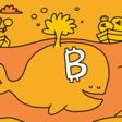 Waarom bijna niemand nog met bitcoin betaalt
