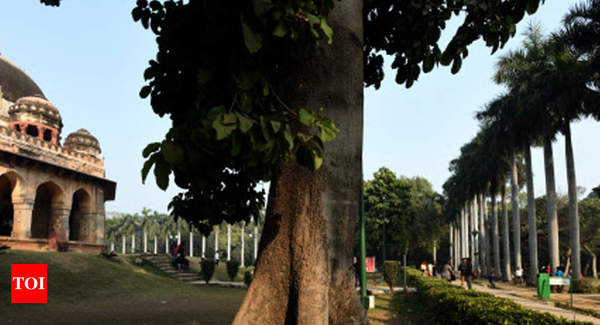 New Delhi Municipal Corp census to give each tree an identity