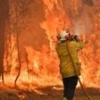 Australian firefighters die as flames circle Sydney | eNCA