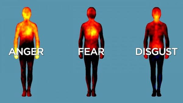 Mapping Emotions in the Body: A Finnish Neuroscience Study Reveals Where We Feel Emotions in Our Bodies | Open Culture