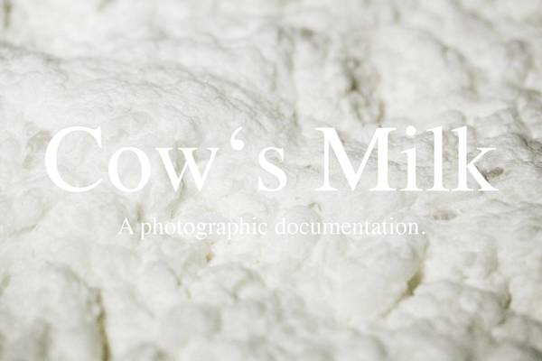 [Featured Project] Cow's Milk // Manuela Braunmüller