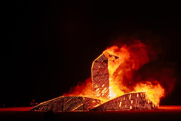 Utrolige kunstinstallasjoner bygges opp og brennes ned over en lav sko, som for eksempel denne 10 meter høye kobraen bygget i tre.