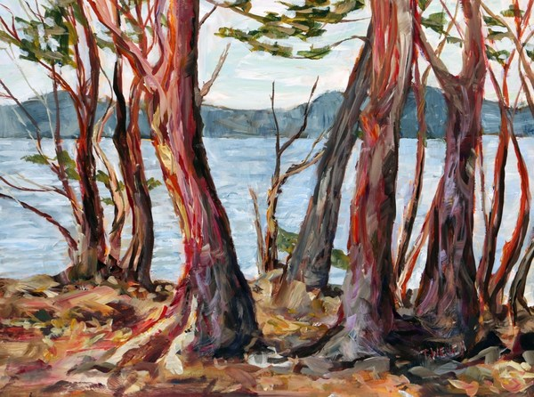 Arbutus Tree Morning St John's Point study by Terrill Welch