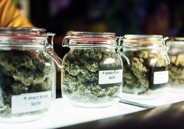 Montana marijuana legalization proposals take first steps toward 2020 ballot