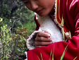 How AI (and Mushrooms) Are Helping Fight Poverty in China's Most Remote Villages - Time