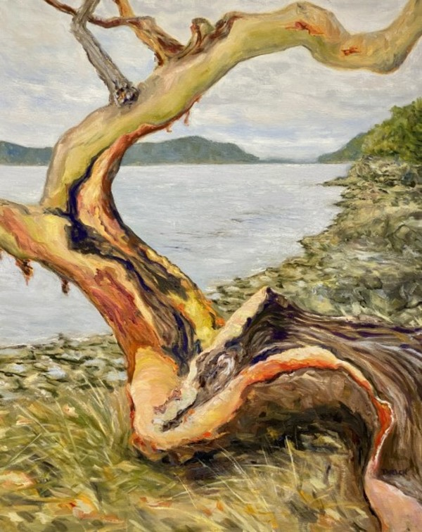 Arbutus Entertaining A Grey Day by Terrill Welch | Artwork Archive