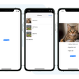 On-Device Machine Learning With SwiftUI And PyTorch Mobile
