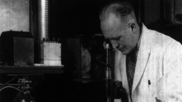 J.C. Mol: How a Dutch film master was forced to make Japanese propaganda | Beeld en Geluid