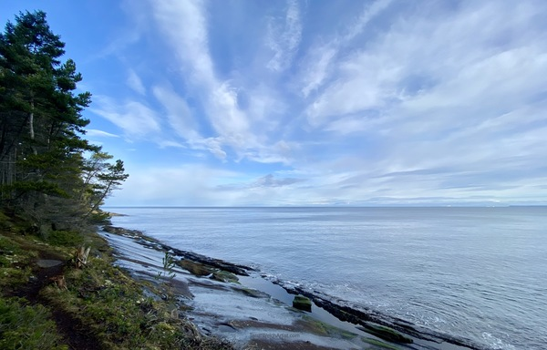 Seaside Trail Mayne Island B.C. by Terrill Welch