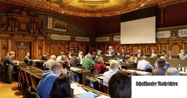 Die Sitzverteilung in einem 50er-Rat