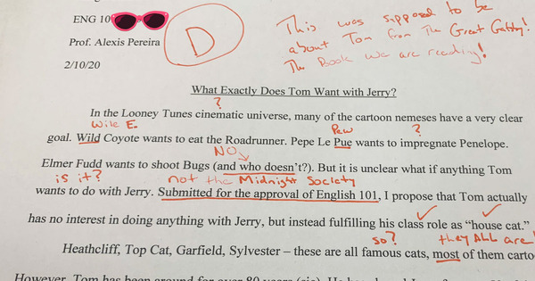 The Story Behind Alexis Pereira's Viral Essay Twitter Joke