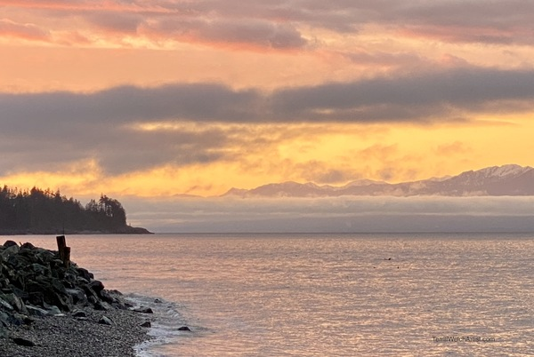 Sunrise Gordon's Beach by Terrill Welch