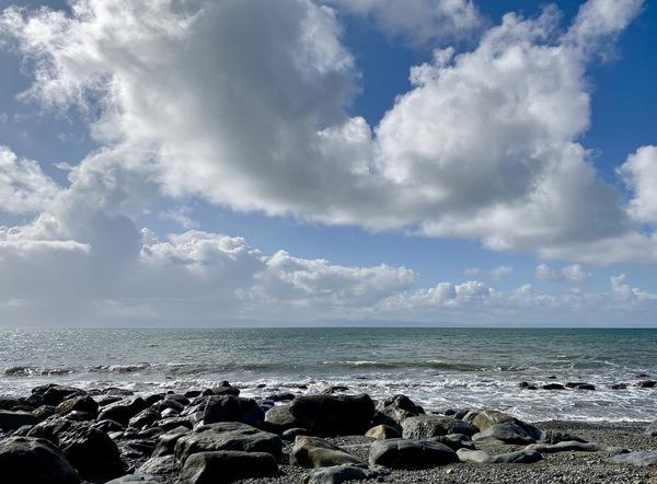 Muir Creek Beach by Terrill Welch