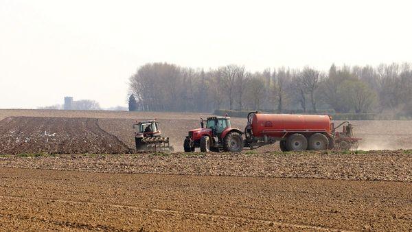 """Climat, """"agribashing"""", rémunération : les trois défis des agriculteurs des Hauts-de-France - Klimaat, 'agribashing' en compensaties: drie uitdagingen voor landbouwers in Hauts-de-France"""