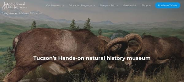 International Wildlife Museum Gets A New Look