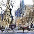 End of the road for Chicago's horse-drawn carriage industry
